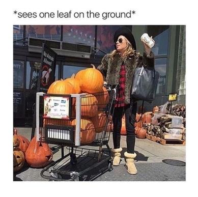fall meme